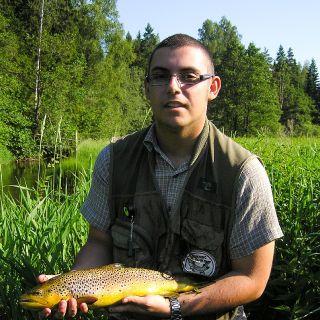 Beautiful Estonian wild brown trout