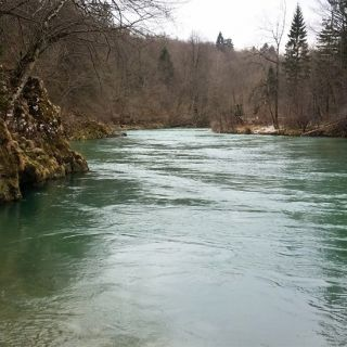 Sava river - Slovenia! Larger stream means larger species! A home of Hucho-hucho salmons!