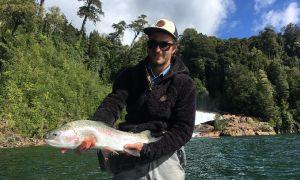 Rio Calcurrupe, futrono, Provincia del Ranco, Chile