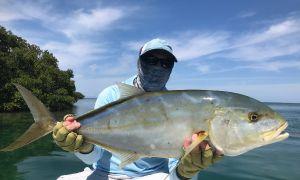 Miami - Everdlades National Park, Miami, Florida Keys, United States