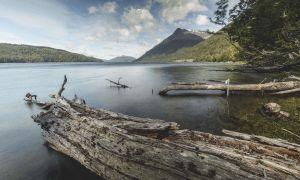 Lago Deseado, Tierra del Fuego, Region de Magallanes y de la Antartica Chilena, Chile