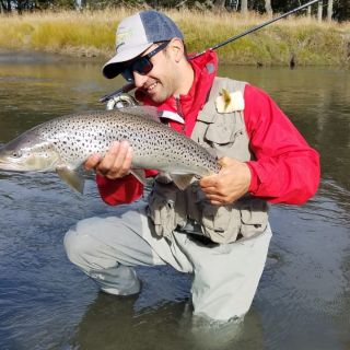 Brown in Claro River