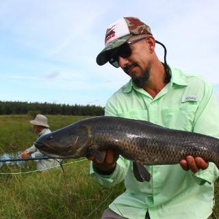 Creek fishing for Tarariras and Dorados