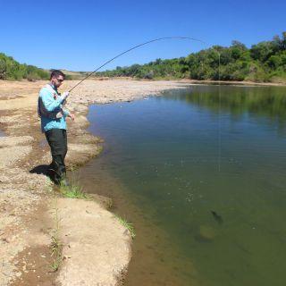 Sightfishing