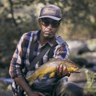 Brown trout on the dry fly.