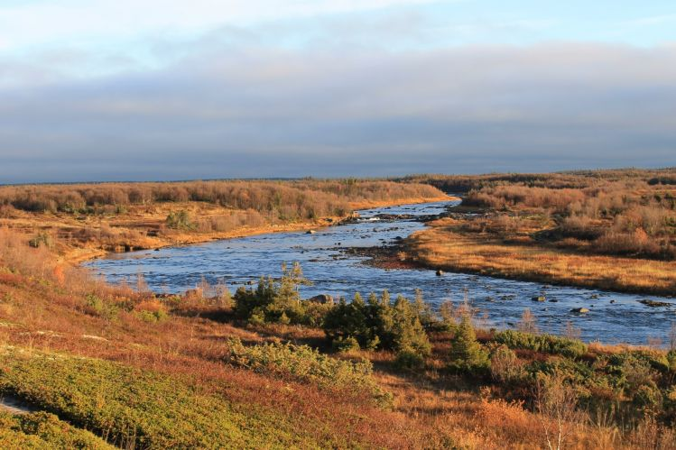 Notes about Atlantic salmon fishing on the rivers of White sea