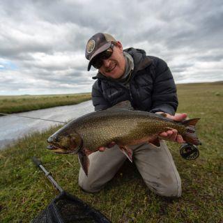 Massive brook trout