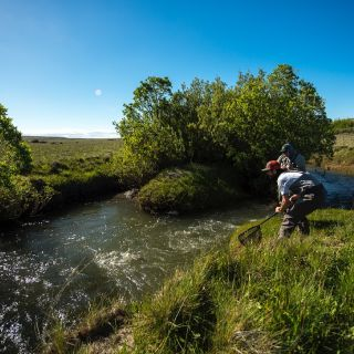 Summer time trout fishing in Patagonia