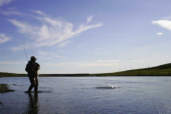 Salmon fishing in Iceland