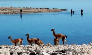 Lago Strobel, Estancia Laguna Verde, Santa Cruz , Argentina