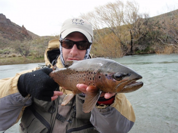 Mariano Ferrara 's Fly-fishing Photo of a Brown trout – Fly dreamers
