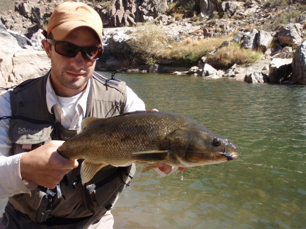 Mariano Ferrara 's Fly-fishing Image of a <strong>Patagonia</strong> Bass – Fly dreamers