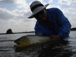 Dorados con moscas en el río Dulce