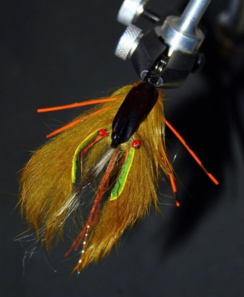 Fly for Brook trout - Photo by Martin Ferreyra Gonzalez – Fly dreamers