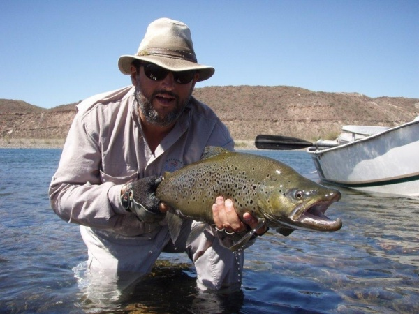 Fernando Hook & Gold Outfitters 's Fly-fishing Pictureof a Brown trout– Fly dreamers