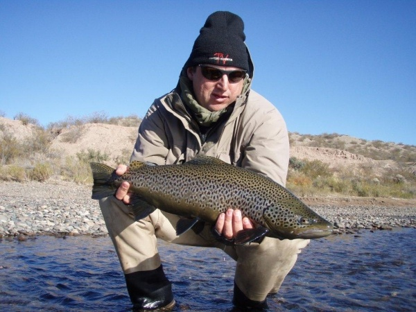 Fly-fishing Photoof Brown trout shared by Fernando Hook & Gold Outfitters – Fly dreamers