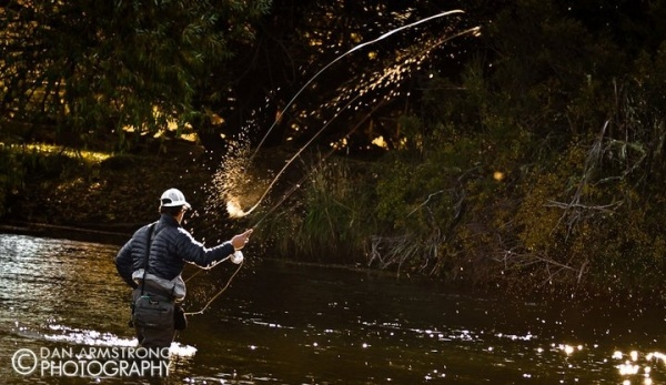 Fly-fishing Situation Image shared by Peter Treichel – Fly dreamers