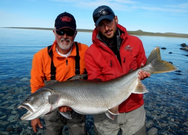 Nick Laferriere 's Fly-fishing Pictureof a Lake trout– Fly dreamers