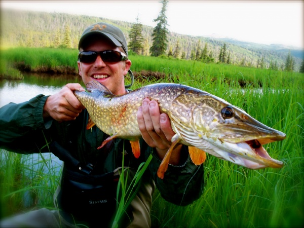Brian Michelotti Kirk Hoover 's Fly-fishing Catch of a Pike – Fly dreamers