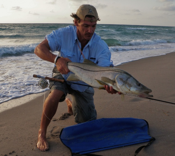 John Kelly 's Fly-fishing Pictureof a Snook - Robalo– Fly dreamers