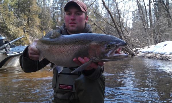 Fly-fishing Imageof Steelhead shared by Michael Tyrna – Fly dreamers