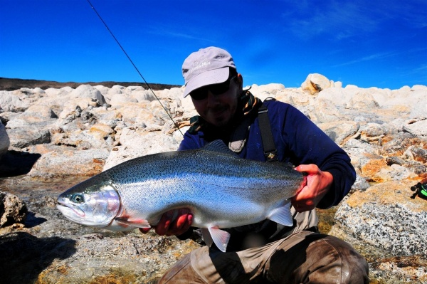 Nicolás Schwint 's Fly-fishing Catchof a Rainbow trout– Fly dreamers