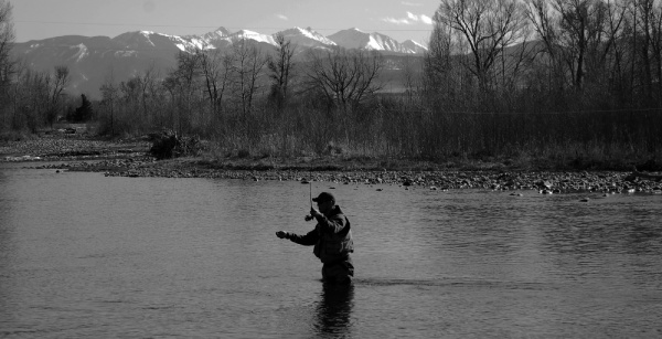 Impressive Fly-fishing Situation Image shared by Craig Condon – Fly dreamers