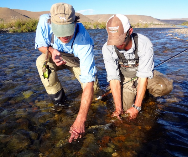 Rankin Morgan 's Fly-fishing Catchof a Brown trout– Fly dreamers