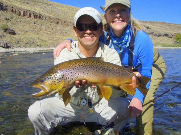 Fly-fishing Photoof Brown trout shared by Edie Lewis – Fly dreamers