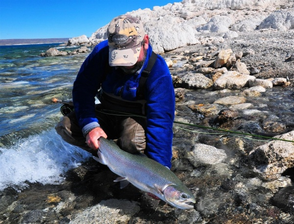 Fly-fishing Photoof Rainbow trout shared by Nicolás Schwint – Fly dreamers