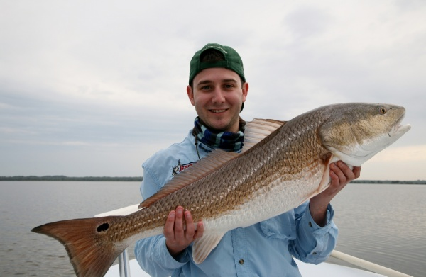 Jeff Rost 's Fly-fishing Catchof a Redfish– Fly dreamers