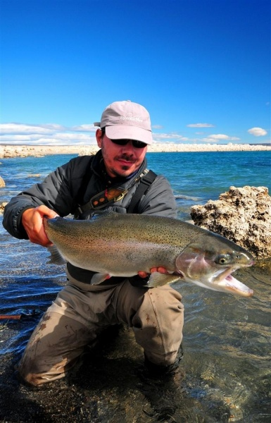 Fly-fishing Imageof Rainbow trout shared by Nicolás Schwint – Fly dreamers