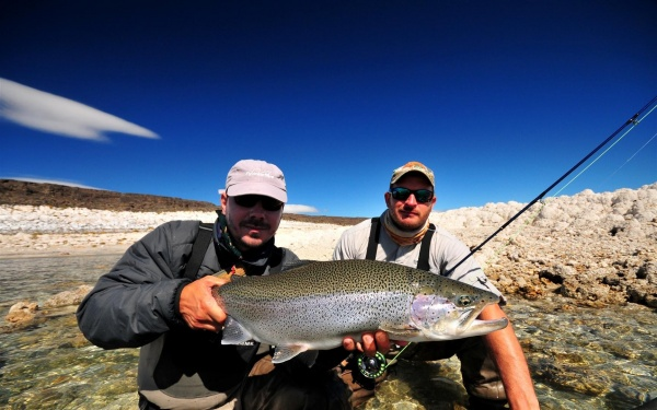 Nicolás Schwint 's Fly-fishing Picof a Rainbow trout– Fly dreamers
