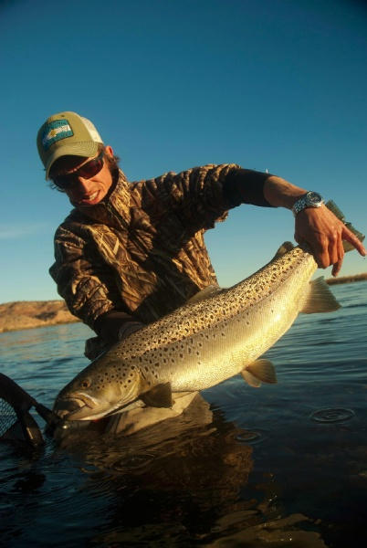 Fly-fishing Imageof Brown trout shared by Niccolo Baldeschi Balleani – Fly dreamers