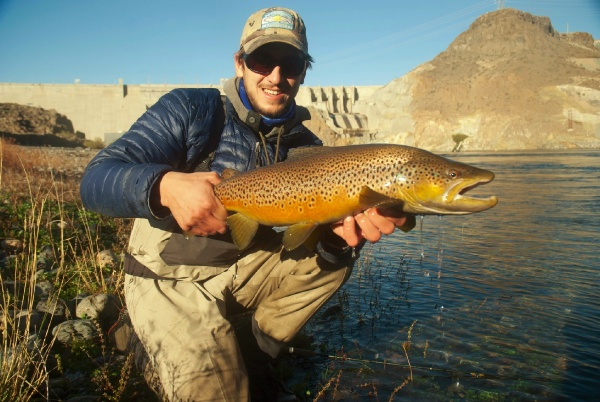 Fly-fishing Pictureof Brown trout shared by Niccolo Baldeschi Balleani – Fly dreamers
