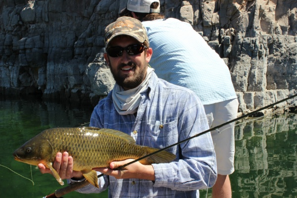 Fly-fishing Imageof Carp shared by Robert Gibbes – Fly dreamers