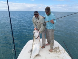 Tips for Getting Better Hookups With Tarpon