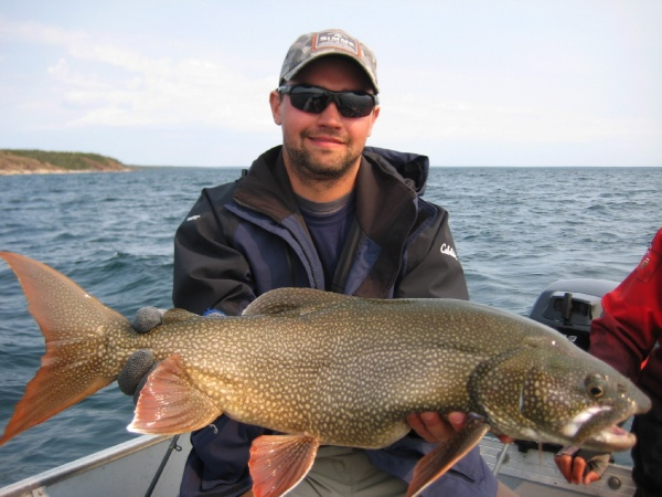 Nick Laferriere 's Fly-fishing Picof a Lake trout– Fly dreamers