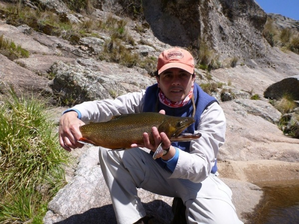 Alejandro Gatti 's Fly-fishing Photo of a Lake trout – Fly dreamers