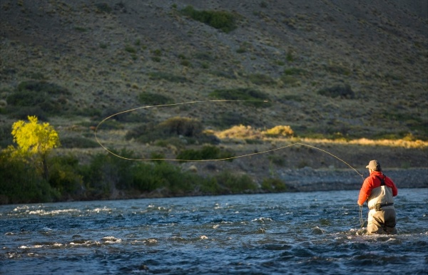 Interesting Fly-fishing Situation Image shared by <strong>Chip</strong> Drozenski – Fly dreamers