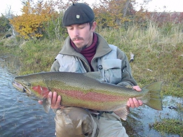 Fly-fishing Pictureof Rainbow trout shared by <strong>Chip</strong> Drozenski – Fly dreamers