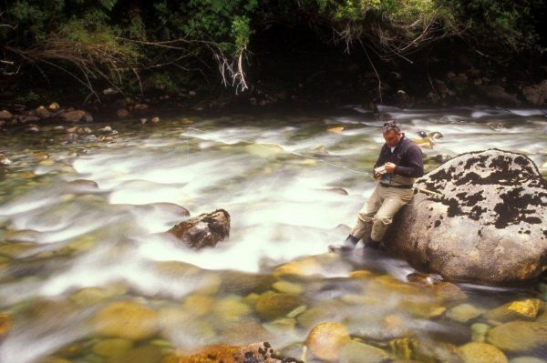 Nomads  Of The Seas 's Fly-fishing Photoof a Brown trout– Fly dreamers