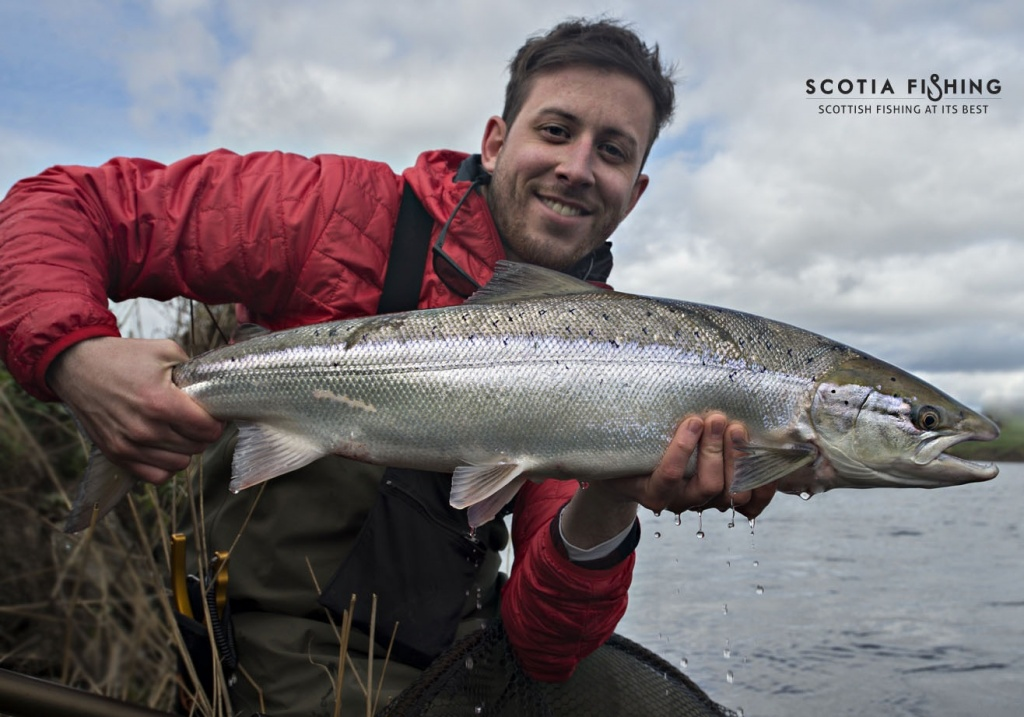 Scotia fishing callum conner fly fishing guide for Salmon fishing near me