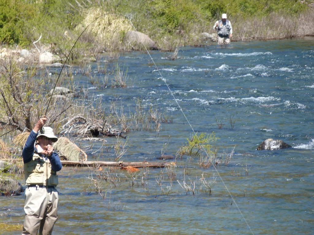 Berninzoni pablo fly fishing guide fly dreamers directory for Fly fishing flies chart