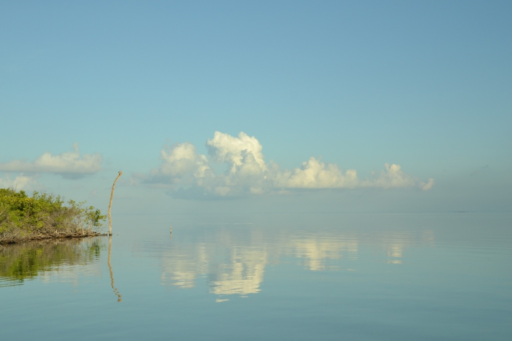 Bajamar fly fishing lodge fly dreamers directory for Fishing san pedro belize