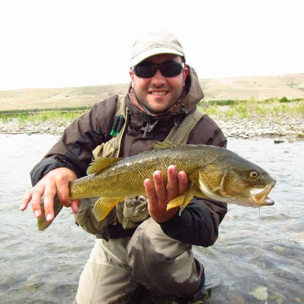 Fly-fishing Picture of <strong>Patagonia</strong> Bass shared by Leandro Della Gaspera – Fly dreamers