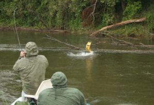 Juramento fly fishing