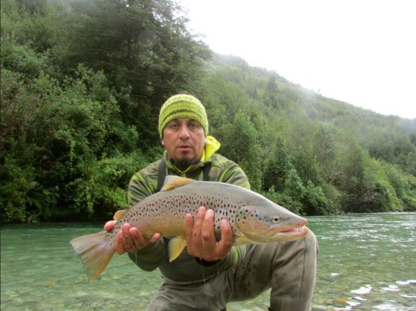 Fly-fishing Photoof Brown trout shared by Alex Habibeh – Fly dreamers