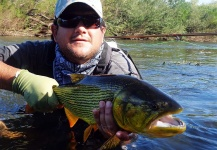 Fly-fishing Imageof Golden <strong>Dorado</strong> shared by Ariel Najle – Fly dreamers