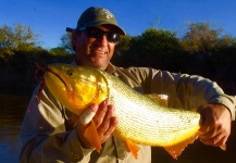 Fernando Hook & Gold Outfitters 's Fly-fishing Photo of a Golden <strong>Dorado</strong> – Fly dreamers